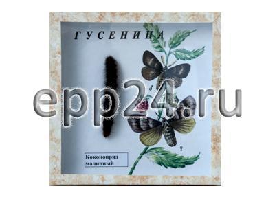 Коллекция Гусеница