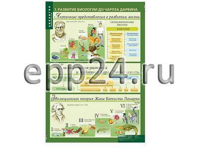 Комплект таблиц Биология 10-11 классы. Эволюционные учения (10 шт.)