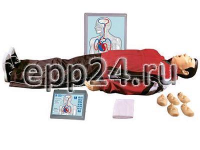 Тренажер для отработки навыков оказания первой медицинской помощи