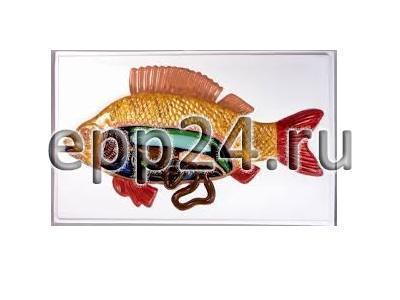 Модель барельефная Внутреннее строение рыбы