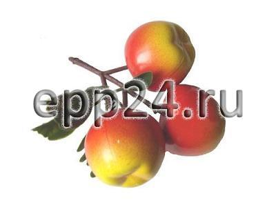 Ветка муляжей Яблоки