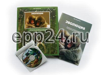 CD Эволюция