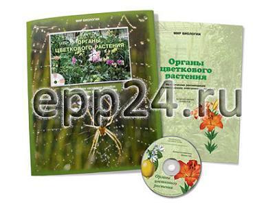 CD Органы цветкового растения