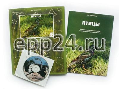 CD Птицы