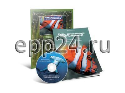 CD Рыбы. Земноводные. Пресмыкающиеся