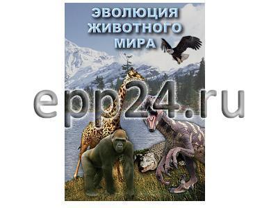 DVD Эволюция животного мира