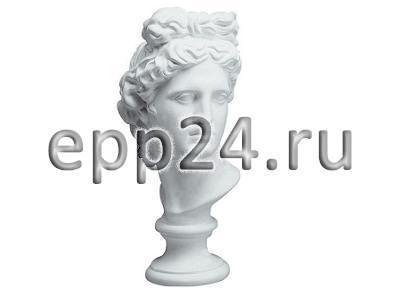 Гипсовая голова Аполлон
