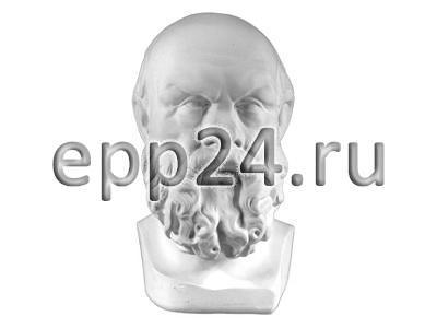 Гипсовая голова Сократ