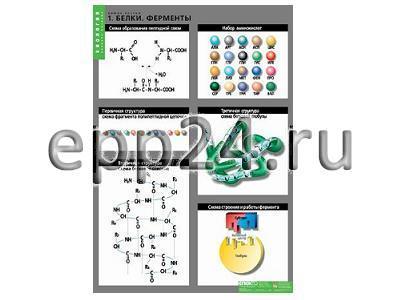 Комплект таблиц Химия клетки (3 шт.)