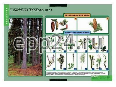 Комплект таблиц Растения и окружающая среда (7 шт.)