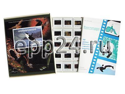 Слайд-альбом Млекопитающие