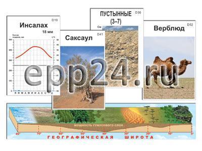 2.11.39 Модель-аппликация природных зон Земли