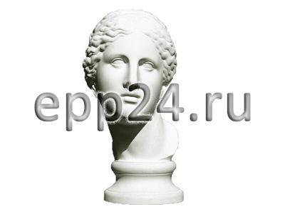 2.12.28 Комплект гипсовых моделей головы