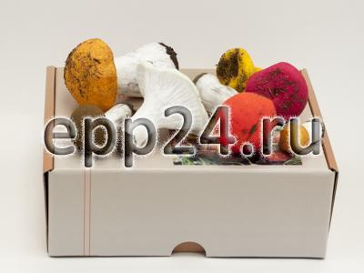 2.12.31 Муляжи съедобных и ядовитых грибов