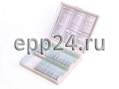 2.23.100 Комплект микропрепаратов по ботанике (углубленный уровень)